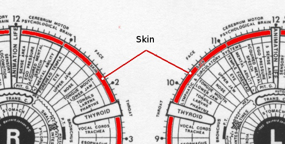 Cure for Vitiligo – The Michael Jackson skin syndrome