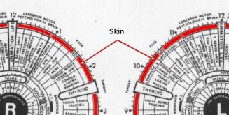 irid skin