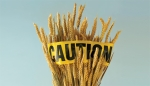 gluten-caution tape