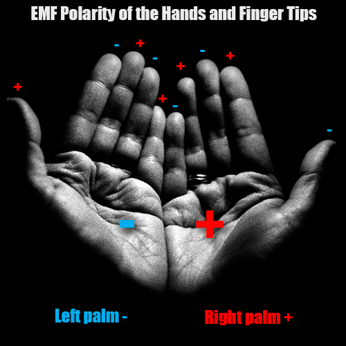emf hand chart